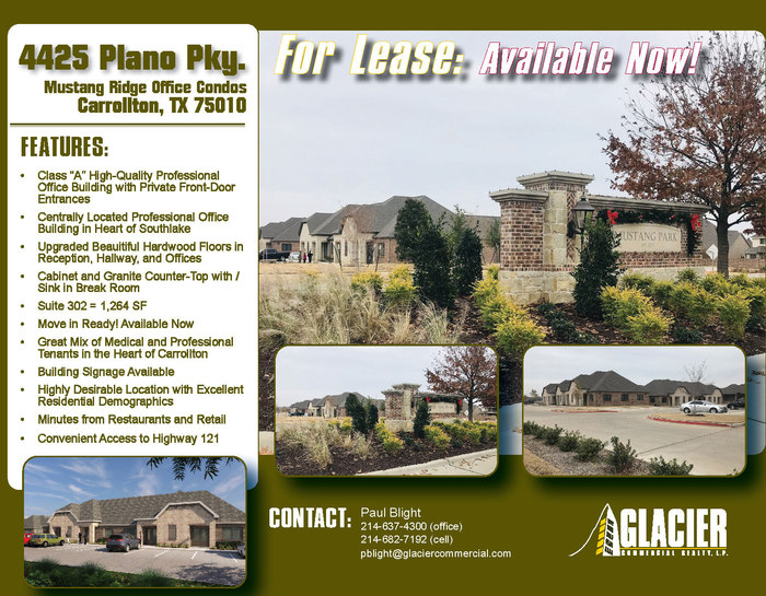New_204425_20plano_20pky._20for_20lease_20flyer_page_1